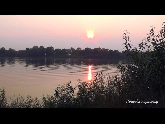 ЗАКАТ НА РЕКЕ ~ Расслабляющие звуки реки Пение птиц со Звуками природы ~ ДЛЯ ДУШИ