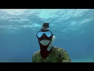 Deep house presents gopro directors cut shark riders