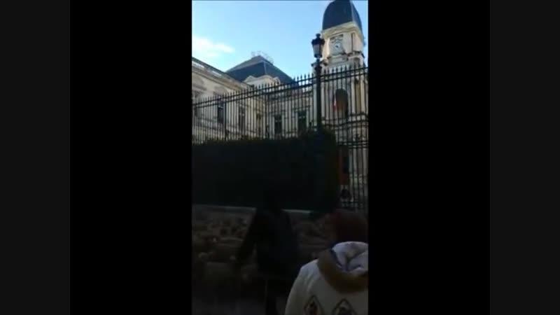 300 moutons devant la Préfecture de Nîmes ce matin 6 décembre 😉