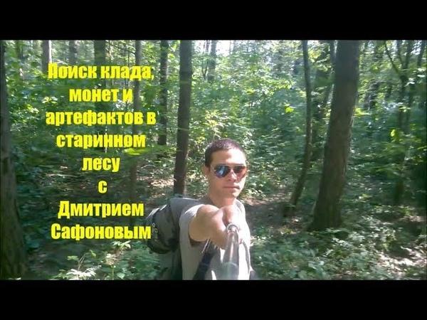 Коп в тысячелетнем лесу. Дмитрий Сафонов ищет клад монеты и артефакты с Minelab Go Find 66
