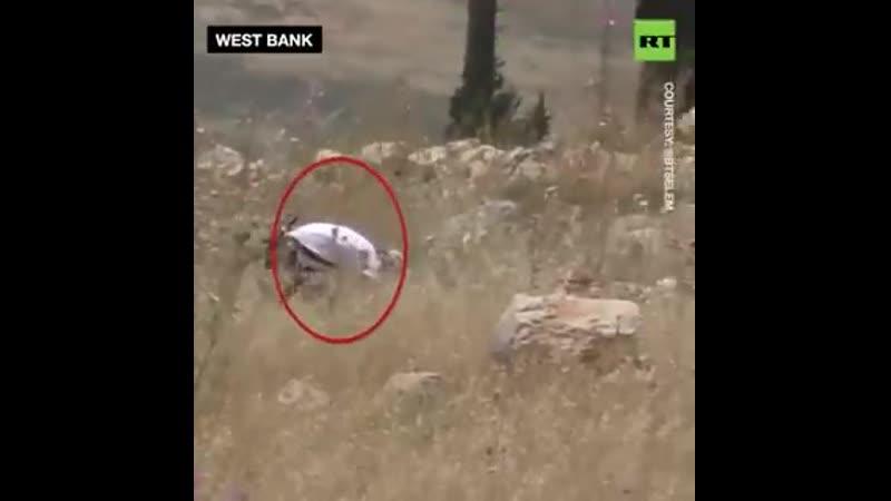 IDF признал что еврейские поселенцы подожгли поля WestBank в прошлую пятницу изменив свою версию после того как первоначаль