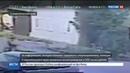 Новости на Россия 24 • За сведения о велосипедисте, облившем пешеходов кислотой, назначена награда в полмиллиона
