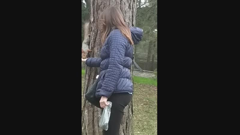 кисловодский парк женщина с немытым влагалищем кормит белку а я такой заглянул в камеру