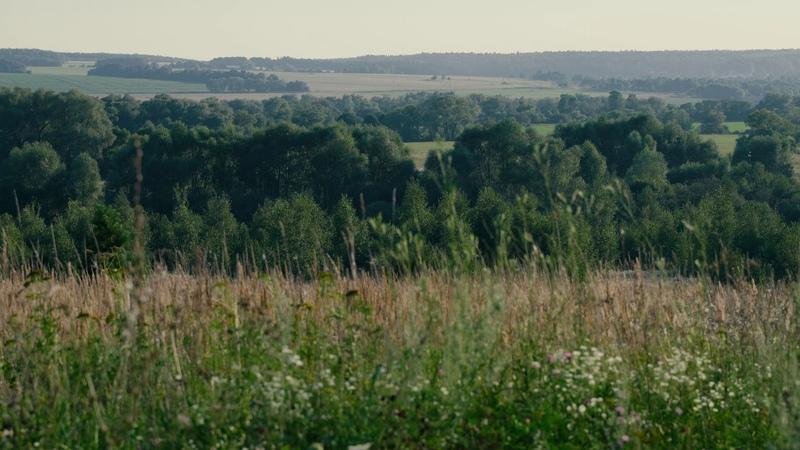 Долина реки Протвы у деревни Величково Valley of the near the Velichkovo Kaluga Russia