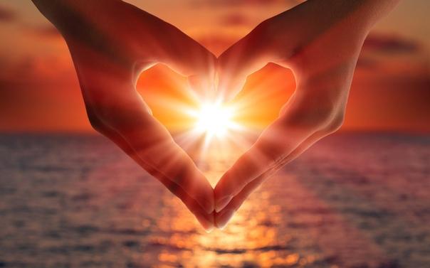 Любовь растворяет гнев, любовь заставляет забыть об обидах, любовь разгоняет страх, любовь создает безопасность