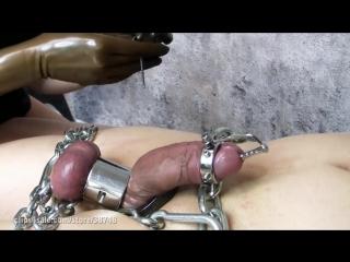 Cock torture - cbt