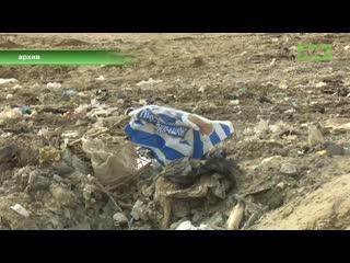 Заключенные перерабатывают мусор. Как вам такое, а