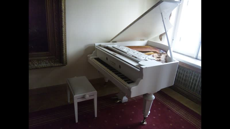 F.Liszt.Hungarian Rhapsody №3 (Petr Averin,piano)