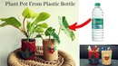 Plant pot from plastic bottle Pen holder DIY Best out of waste