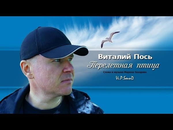 Виталий Пось - Перелетная птица (Official Video 2019)