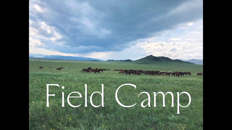 Field Camp King's Response