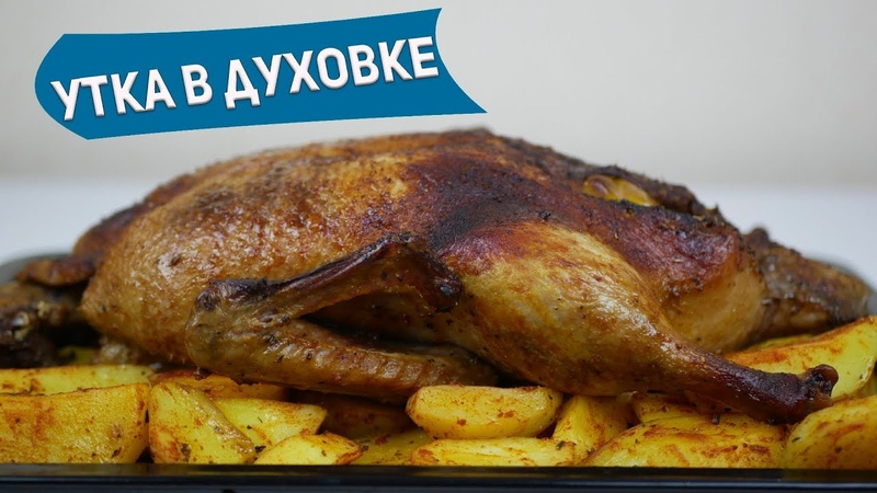 Как запечь утку в духовке или как приготовить утку в духовке