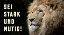 Sei stark und mutig Vertraue dem himmlischen Vater Wiederum steht geschrieben