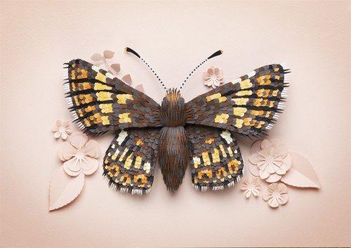 С помощью более чем 4 тысяч кусочков бумаги художница кропотливо создаёт трёхмерные скульптуры птиц и бабочек Художник по бумаге Лиза Ллойд (Lisa Lloyd) из Великобритании с помощью пинцета и