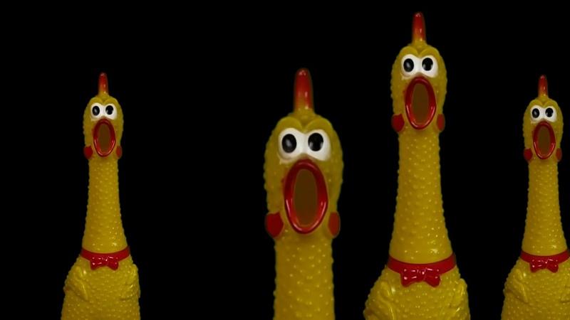 Bohemian Rhapsody - Mr.Chicken (cover)