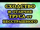 ⚜ СХОДСТВО и отличие ТРУСЛИВЫХ и БЕССТРАШНЫХ людей ⚜ эзотерика дуйко школакайлас андрейдуйко