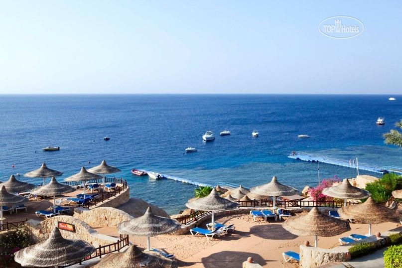 Обзор курорта Шаркс-Бей (Египет), изображение №2