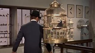 Птицы 1963
