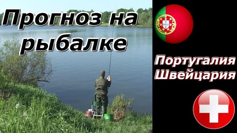 Рыбалка на кормушки ! Прогноз на Лигу Наций : Португалия - Швейцария ! Розыгрыш 500 р.