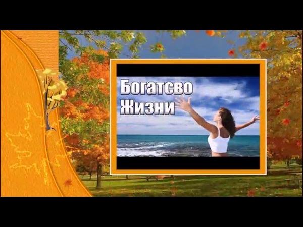 Компания RICHES COMPANY представляет