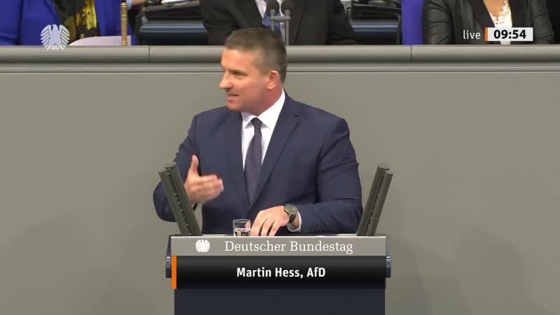 Deutschland ist _zu einem sicherheitspolitischen _Irrenhaus _mutiert! - Martin Hess - AfD-Fraktion (