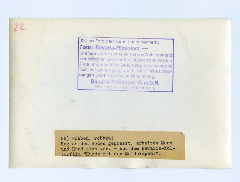 Рядовой вермахта Тассо, изображение №5