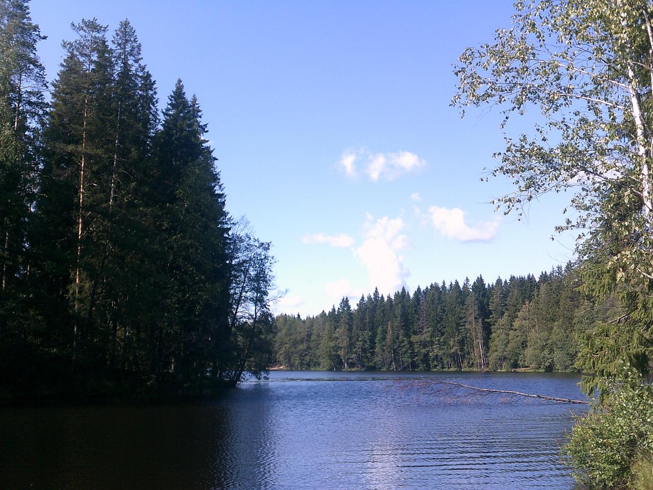 По Карельскому перешейку. Прогулка вдоль озера Долгого.