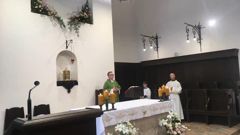 XXIX е рядовое воскресенье в монастырском храме св Антония Чудотворца 2 часть