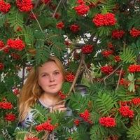 Светлана Шерстобитова