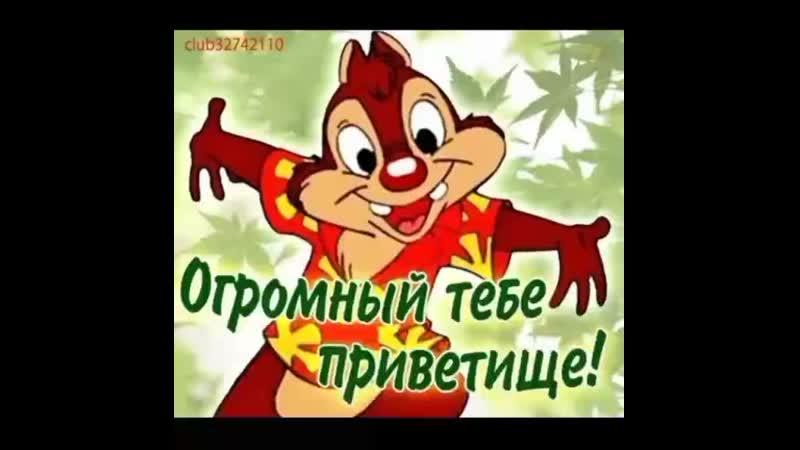 VID_36040420_225543_997.mp4