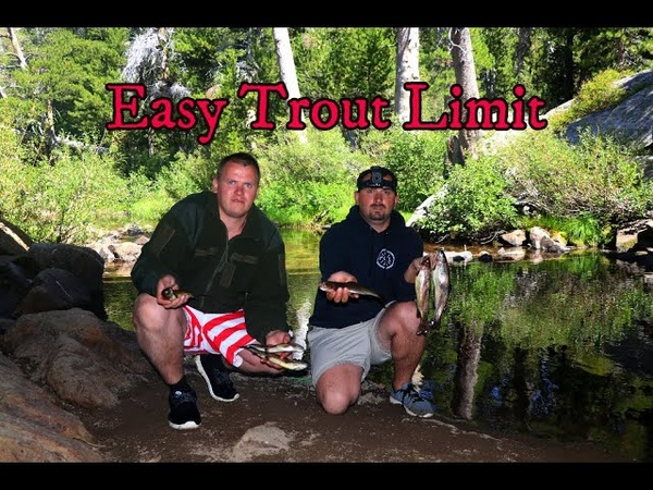 Trout fishing easy limit