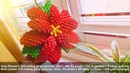 How to make Christmas flower 3D Origami - Hướng dẫn xếp hoa Origami 3D