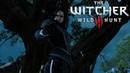 The Witcher 3 Wild Hunt 47 ⇆ ПОИСКИ С ЙЕННИФЕР