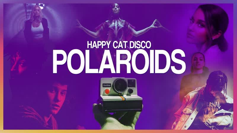 Megamashup 2019 Polaroids Happy Cat Disco