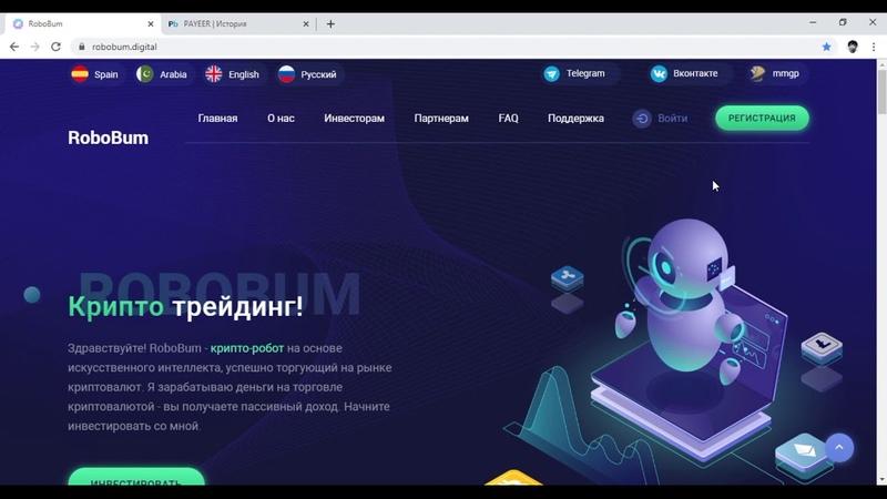 RoboBum заработал 280 рублей за 1 день