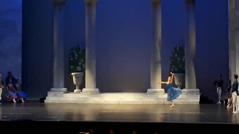 Swan Lake Act 1 Birthday Celebration for Prince Sigfried 6
