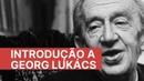 Introdução a Georg Lukács O que é consciência de classe?