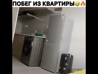 Побег из квартиры  жиза