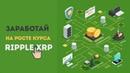 Как заработать на росте курса криптовалюты Ripple XRP kryptoid