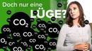 CO2-Steuer: Nur ein weiterer Vorwand, die Menschen zu besteuern?