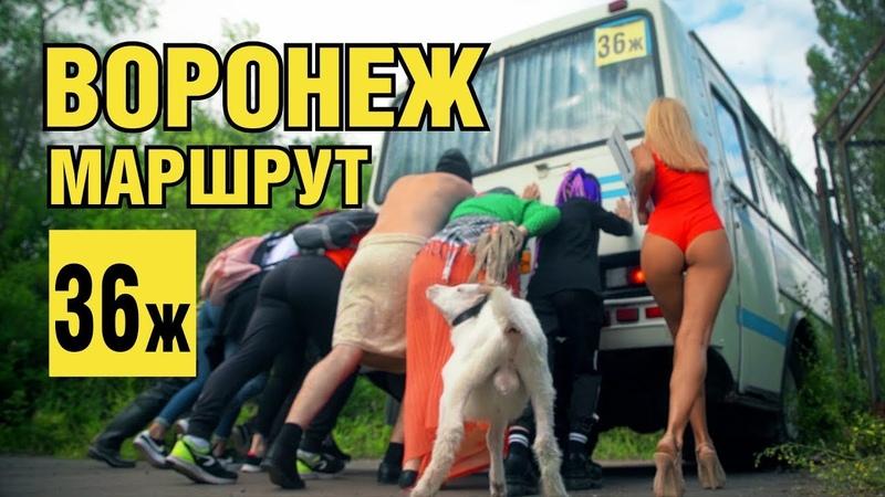 Воронеж. Общественный транспорт. Это не езда.