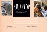 Подарочные сертификаты)