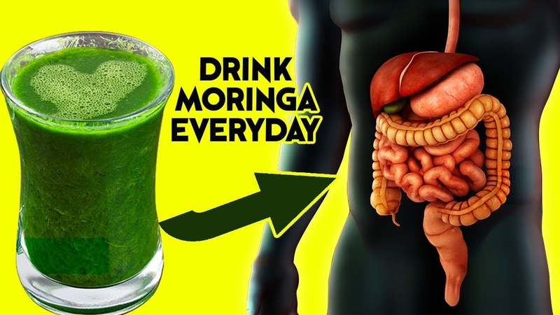 10 Amazing Health Benefits Of Drinking Moringa Every Day What Happens When You Drink Moringa
