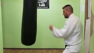 Hozoin ryu atemi waza in Aikido