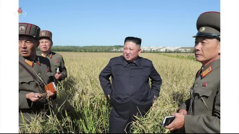 경애하는 최고령도자 김정은동지께서 조선인민군 제810군부대산하 1116호농장을 현지지도하시였다-