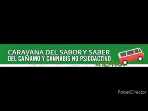 Caravana del Sabor y el Saber -COCINA CANNABICA, SEMILLAS DE CAÑAMO-