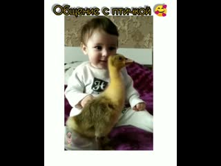 Очень хорошо,когда с детства прививают любовь к животным.