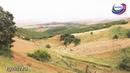 Главу администрации одного из сел Дербентского района подозревают в незаконной раздаче земель