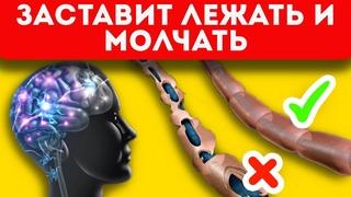 Важнейшая информация! 11 признаков рассеянного склероза