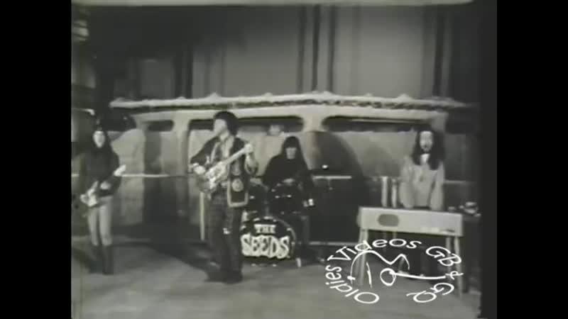 The Seeds - Pushin Too Hard (1967)